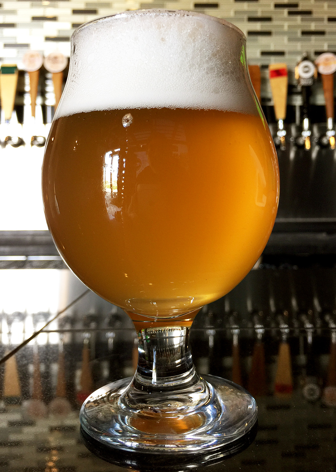 Wild in the Sacc, Pale Ale brewed with a wild yeast strain at the BCT Brewing Project.